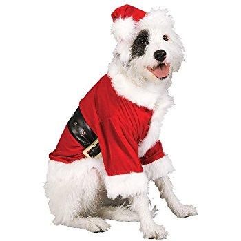 Ashley lookalike in santa suit