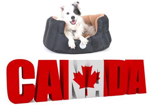 Ashley Nesting Bed Canadian Flag