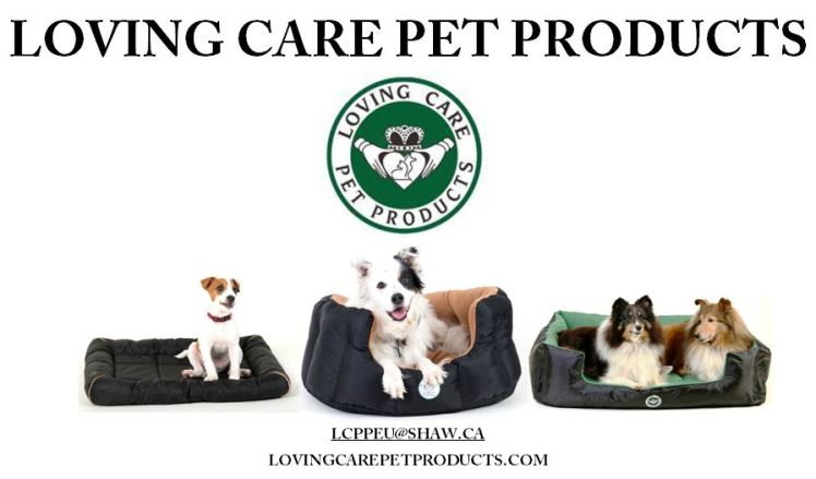 LCPP Ad for Pet lovers 1