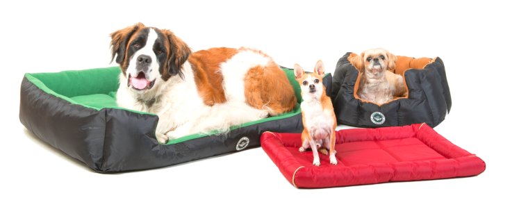 The Peer's Family of Dogs no Bacground and length adjusted.png